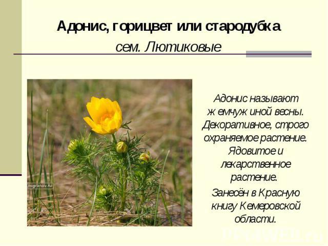 hello_html_m51b50e3c.png