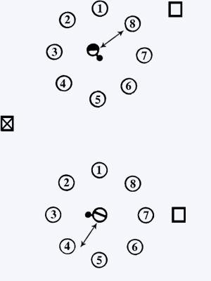 Падающая палка - спортивная игра (описание, правила, рекомендации)