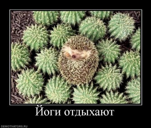hello_html_m1dba5dfa.jpg