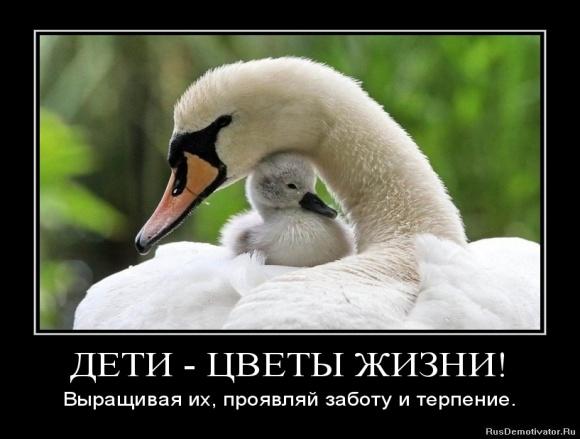 hello_html_m5c5b2a37.jpg