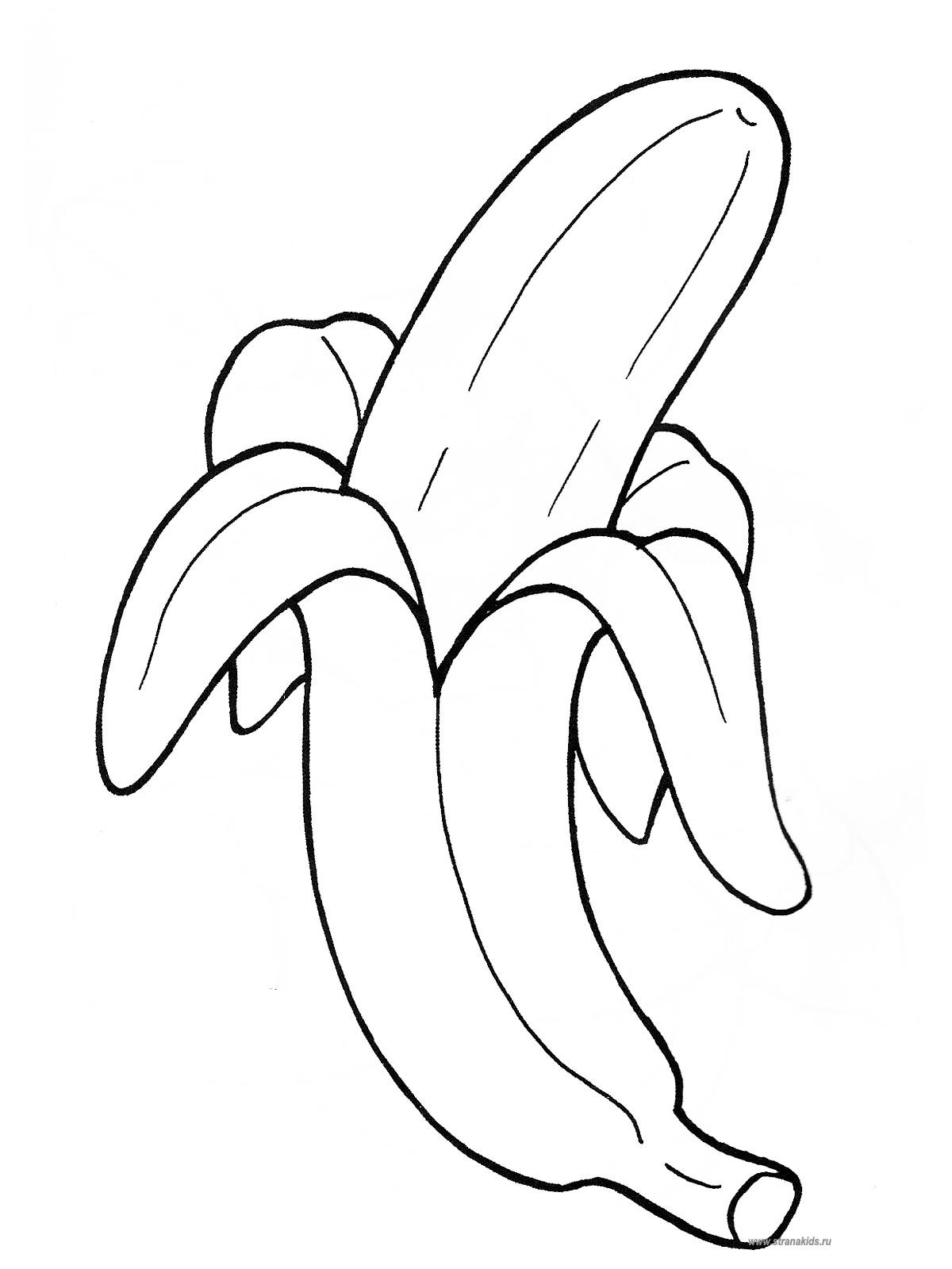 Раскраски фрукты и ягоды. Скачать. Распечатать StranaKids.ru