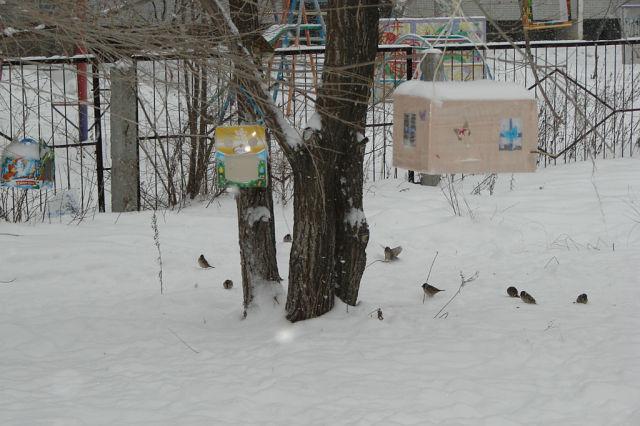 C:\Users\toshiba\Pictures\посвящение в Занковцы !\школа\15.jpg