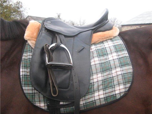 Как сшить для лошади своими руками 281